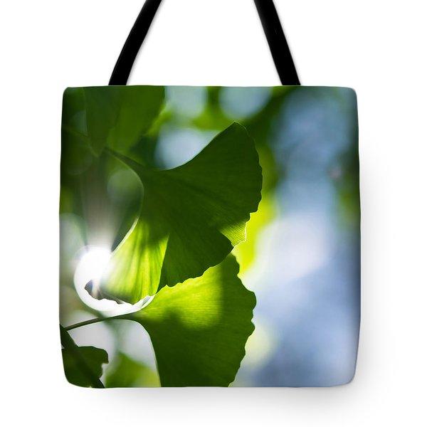 Gingko Leaves In The Sun Tote Bag