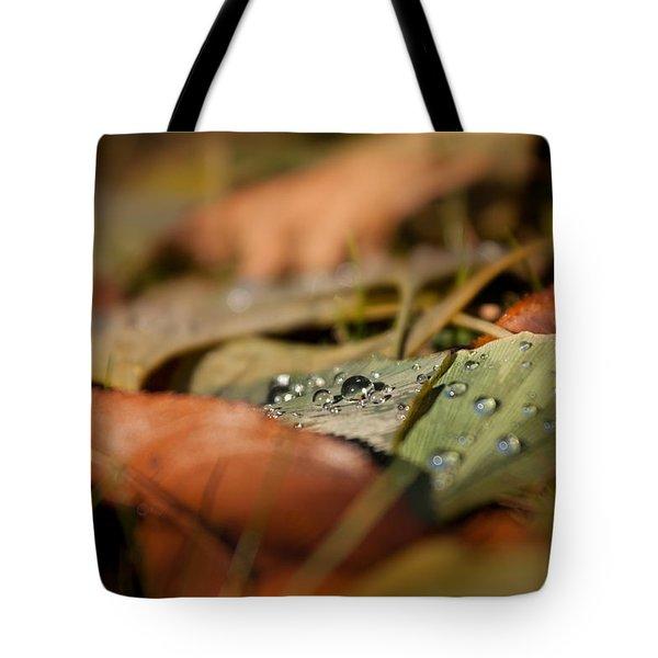 Ginkgo   Tote Bag by Bulik Elena
