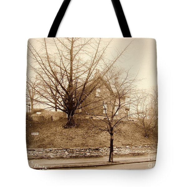 Ginkgo Tree, 1925 Tote Bag by Cole Thompson