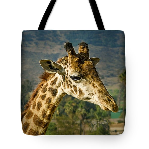 Tote Bag featuring the photograph Giraffe by April Reppucci