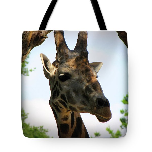 Tote Bag featuring the photograph Giraffe by Beth Vincent