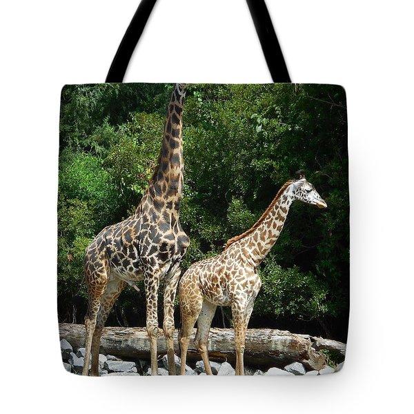 Giraffe, Male And Female Tote Bag