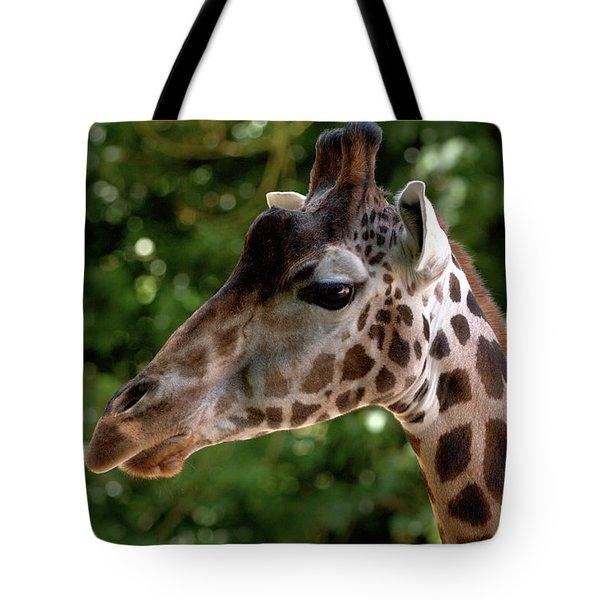 Giraffe Portrait Tote Bag