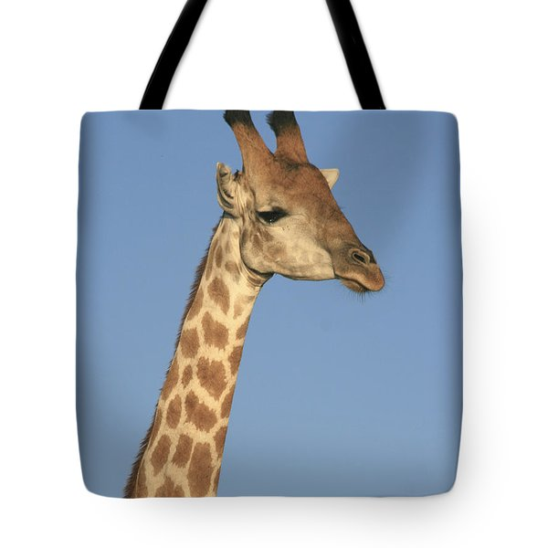 Giraffe Portrait Tote Bag