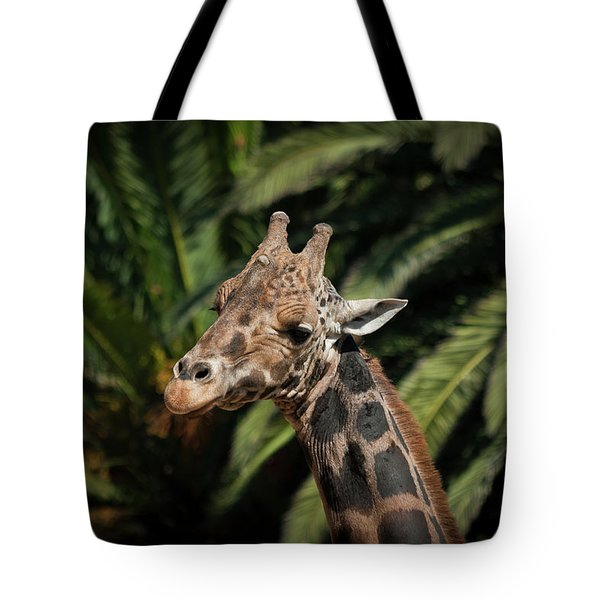 Tote Bag featuring the photograph Giraffe  by Roger Mullenhour
