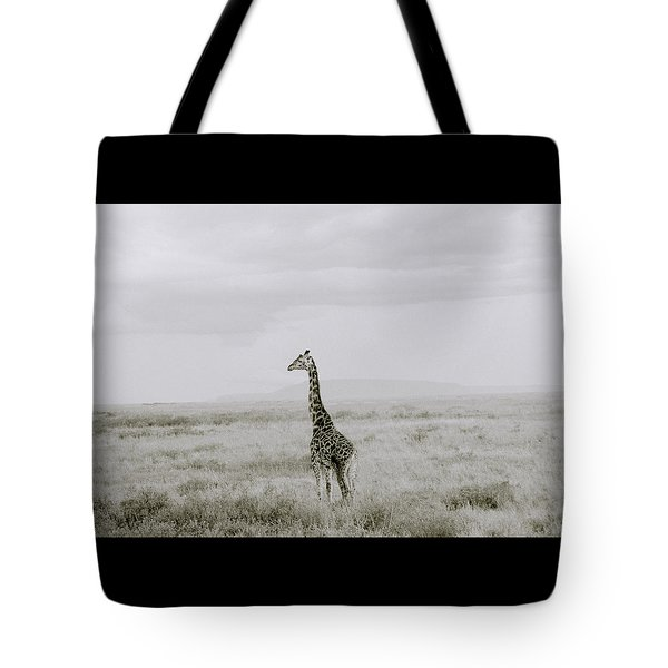 Giraffe Tote Bag by Shaun Higson