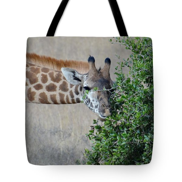Giraffes Eating - Front View Tote Bag