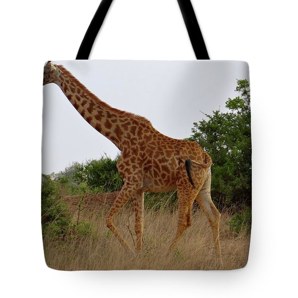 Giraffes On A Walk Tote Bag