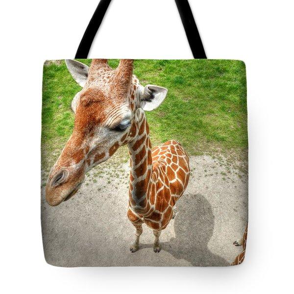 Giraffe's Point Of View Tote Bag by Michael Garyet