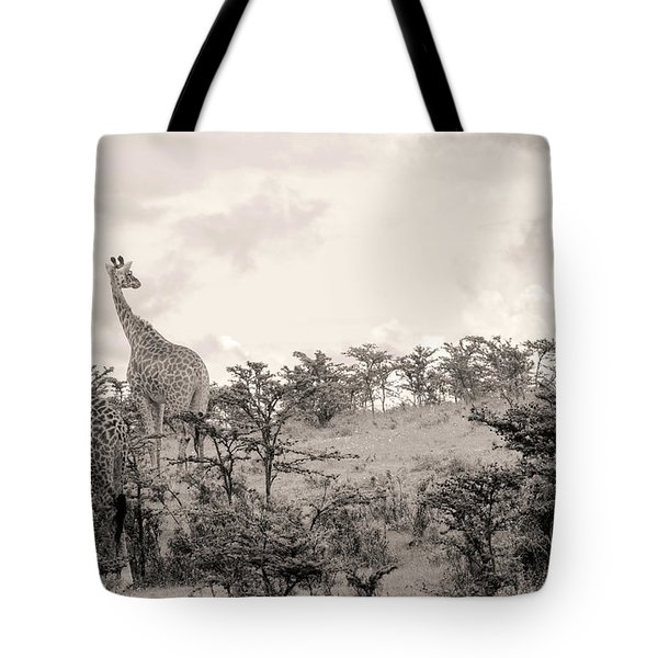 Tote Bag featuring the photograph Giraffes by Stefano Buonamici