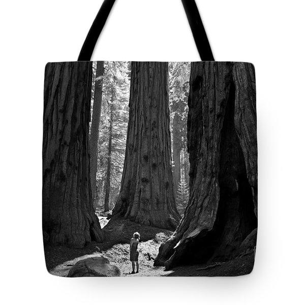 Girl And Giants Tote Bag