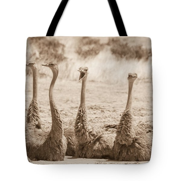 Tote Bag featuring the photograph Girl Talk by Chris Scroggins