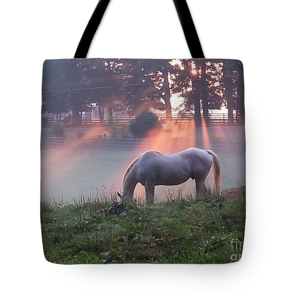 Gitchie And The Sunrise Tote Bag