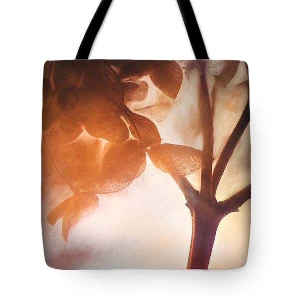 Give Thanks For The Light Tote Bag