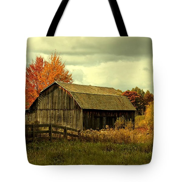 Fall Has Always Been My Favorite Season. Tote Bag by Skip Tribby