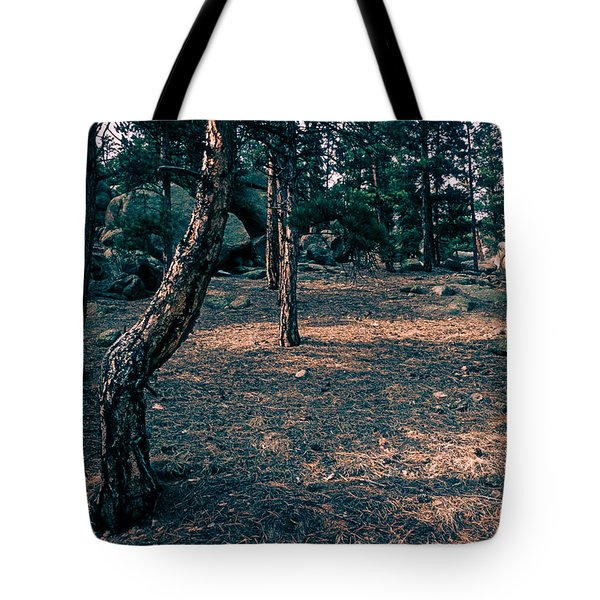 Glade In The Forest Of Colorado Tote Bag by John Brink