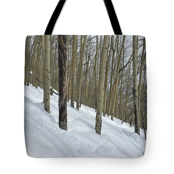 Gladed Run Tote Bag by Christin Brodie