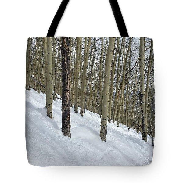 Gladed Run Tote Bag