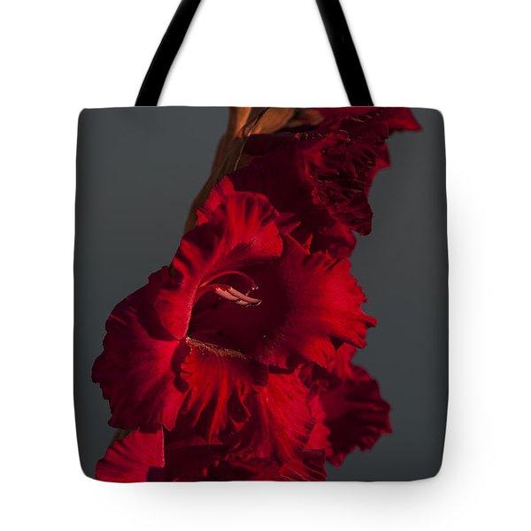 Gladiolus Against A Dark Cloud Tote Bag