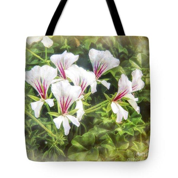 Gladiolus Callianthus Tote Bag