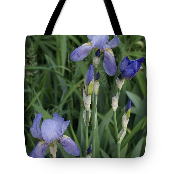Glads Tote Bag by Cynthia Powell
