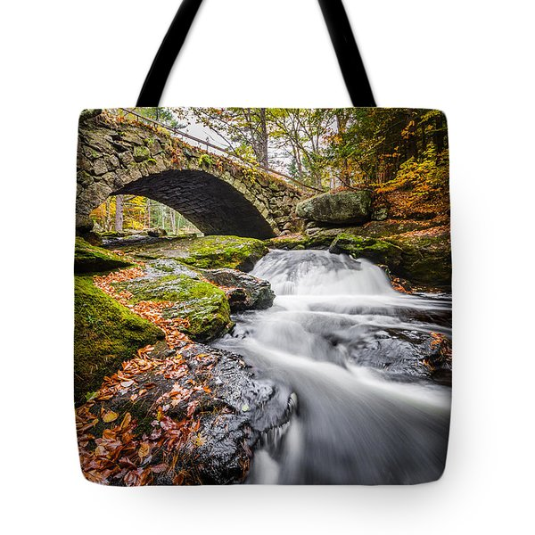 Tote Bag featuring the photograph Gleason Falls by Robert Clifford