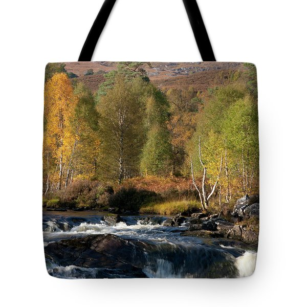 Tote Bag featuring the photograph Glen Affric In Autumn by Karen Van Der Zijden