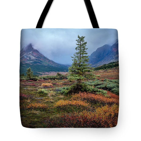 Glen Alps In The Autumn Rain Tote Bag