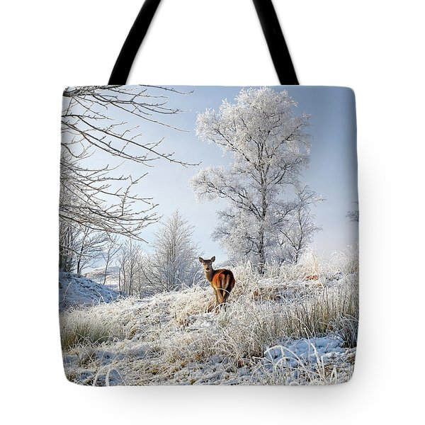 Tote Bag featuring the photograph Glen Shiel Misty Winter Deer by Grant Glendinning