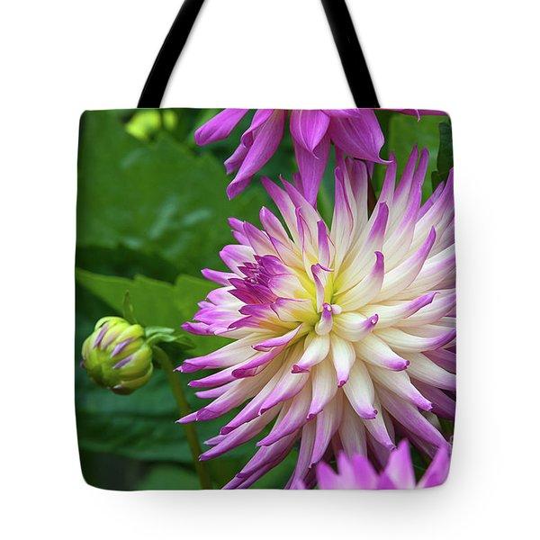 Glenbank Twinkle Dahlia Tote Bag