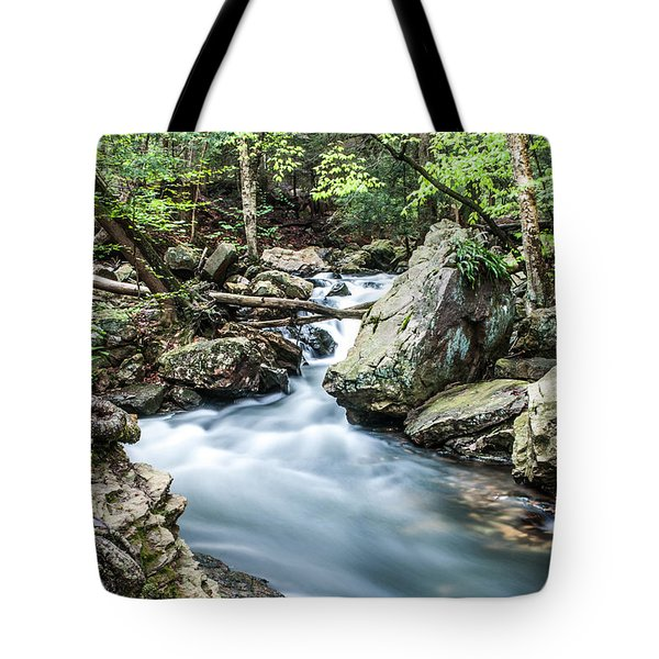 Tote Bag featuring the photograph Glenn Stream 8607 by G L Sarti