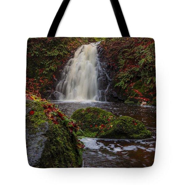 Gleno Falls Portrait View Tote Bag