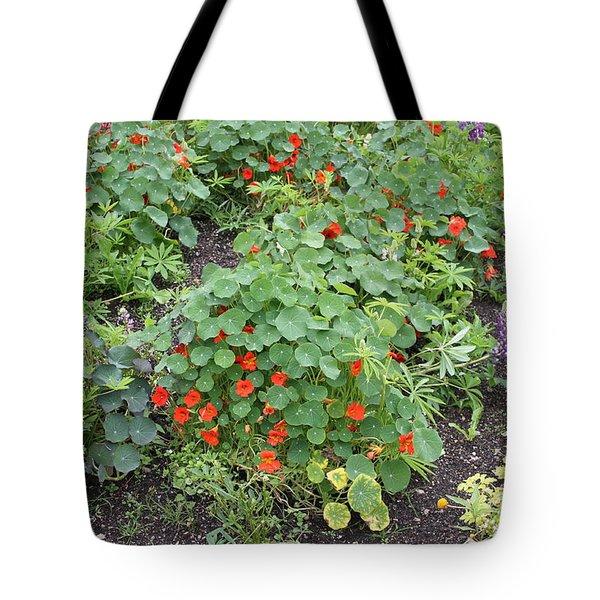 Glenveagh Castle Gardens 4278 Tote Bag