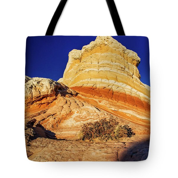 Tote Bag featuring the photograph Glimpse by Chad Dutson