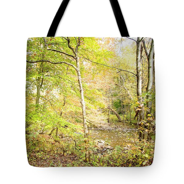 Glimpse Of A Stream In Autumn Tote Bag by A Gurmankin