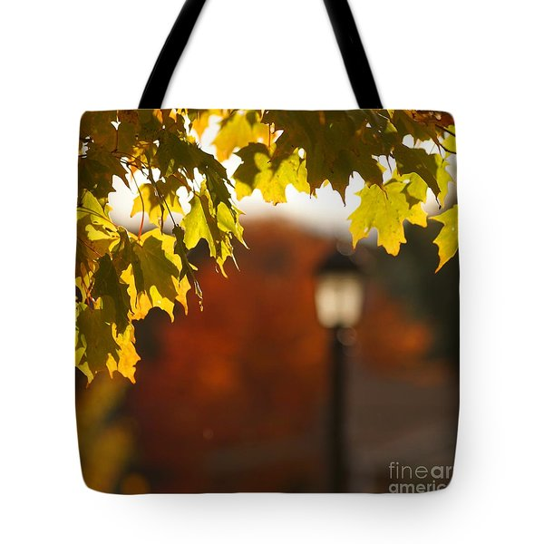 Tote Bag featuring the photograph Glimpse Of Autumn by Aimelle