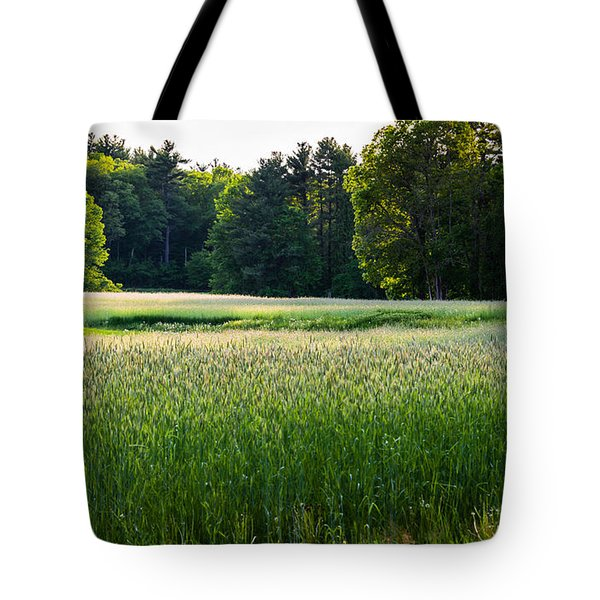 Glistening Green Tote Bag