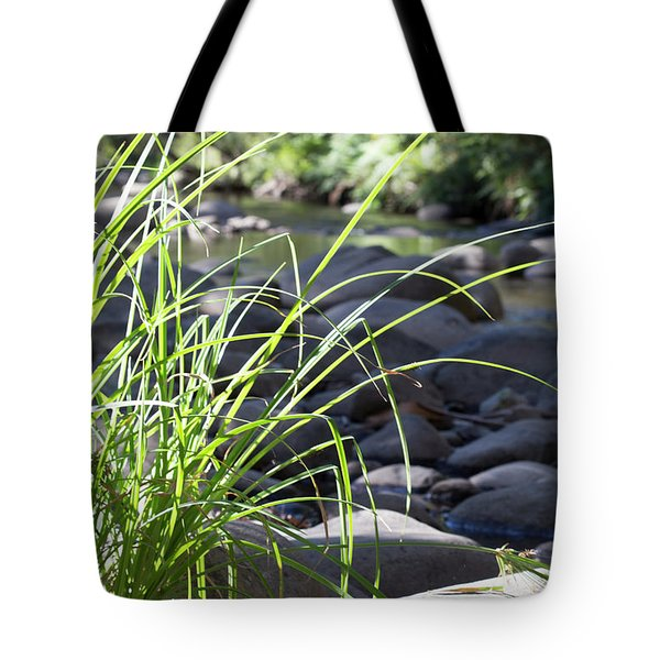 Tote Bag featuring the photograph Glistening In The Sunlight by Linda Lees