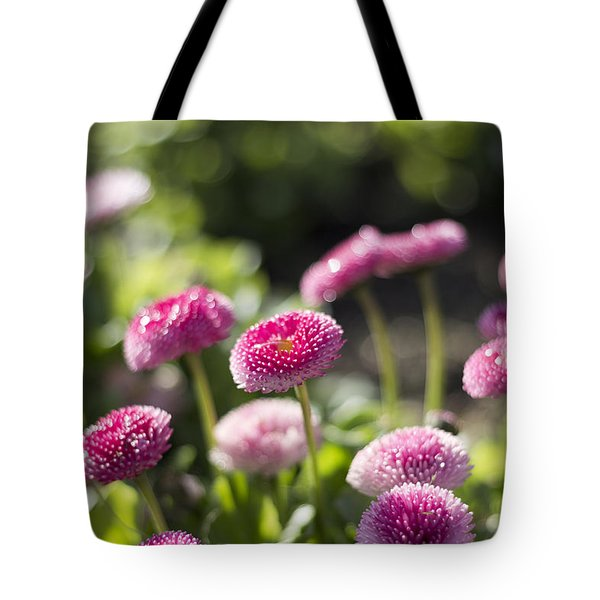 Tote Bag featuring the photograph Glittering Daisies by Helga Novelli