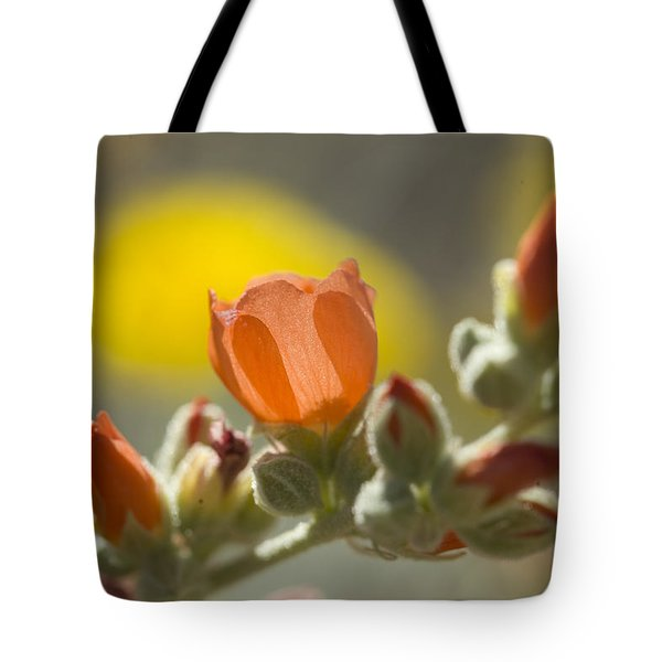 Globe Mallow Glow Tote Bag by Sue Cullumber