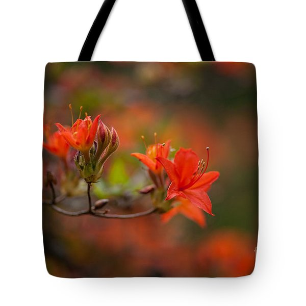 Glorious Blooms Tote Bag by Mike Reid