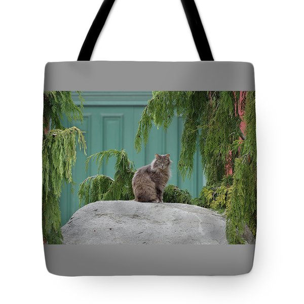 Glorious Cat Tote Bag