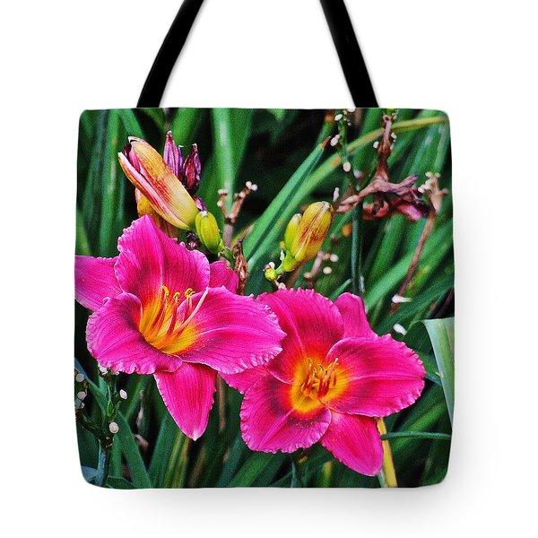 Glorious Daylilies Tote Bag