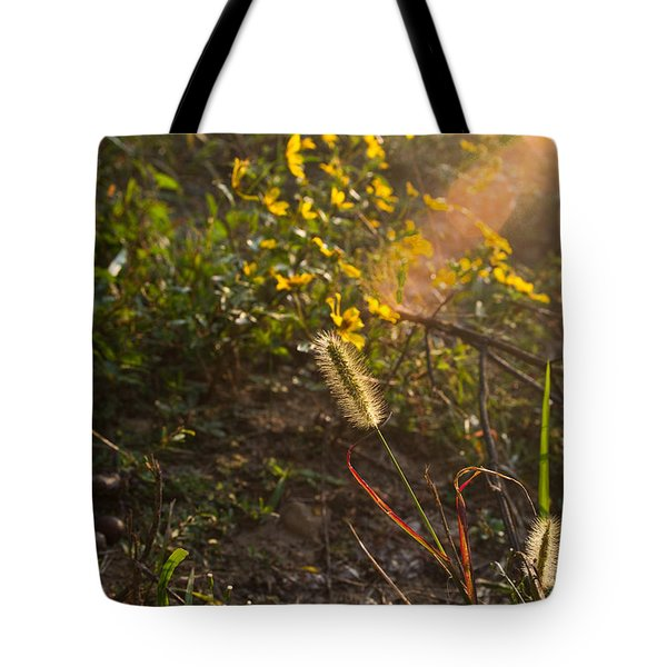 Glorious Foxtail Tote Bag