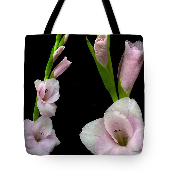 Glorious Gladiolus. Tote Bag by Terence Davis