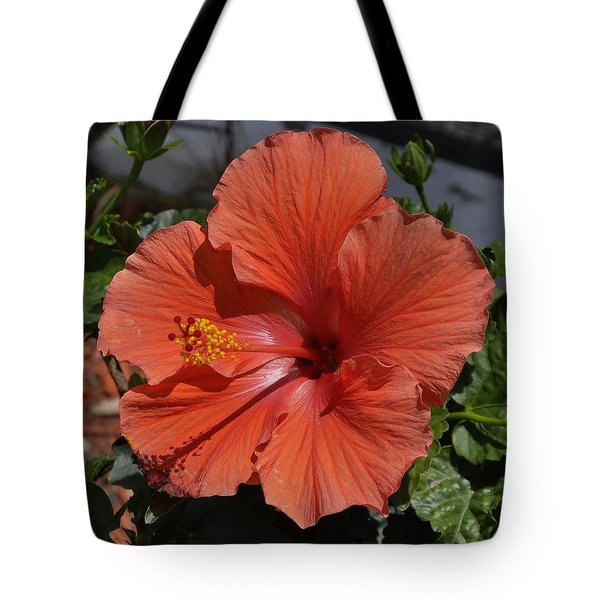 Glorious Hibiscus Tote Bag