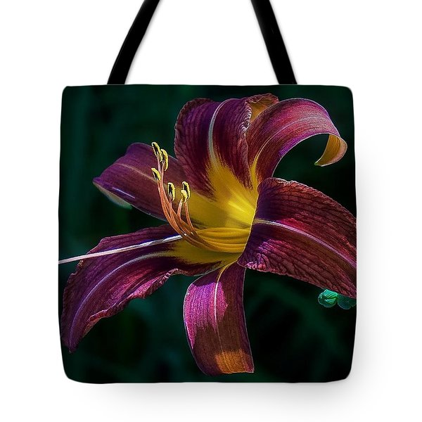 Tote Bag featuring the photograph Glorious by Kendall McKernon