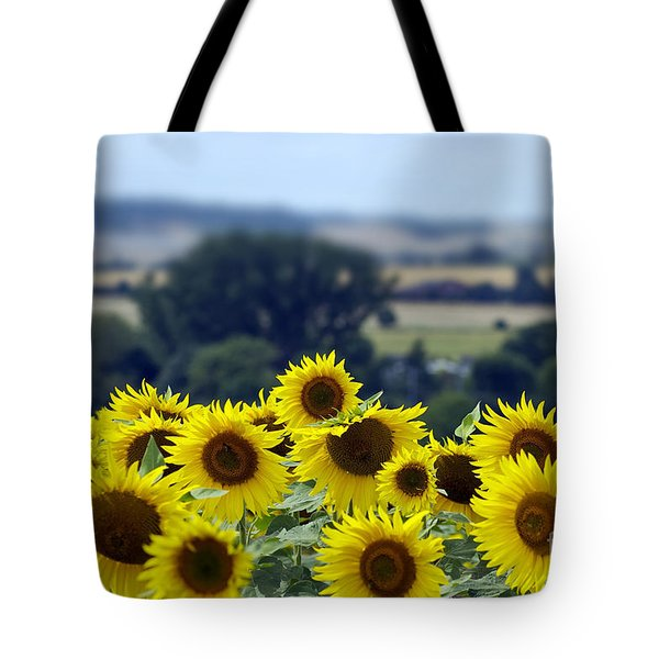Glorious Sunflowers Tote Bag