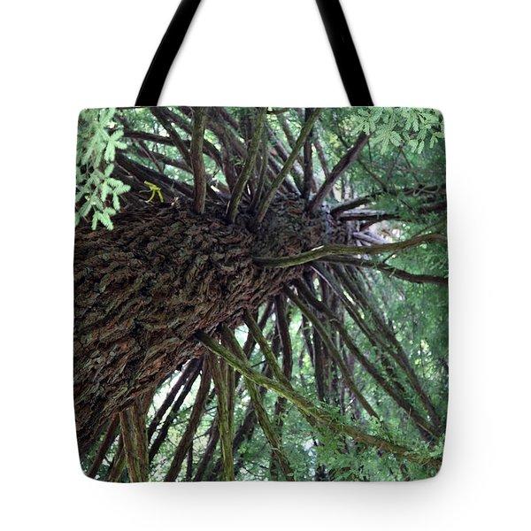 Glorious Tree  Tote Bag