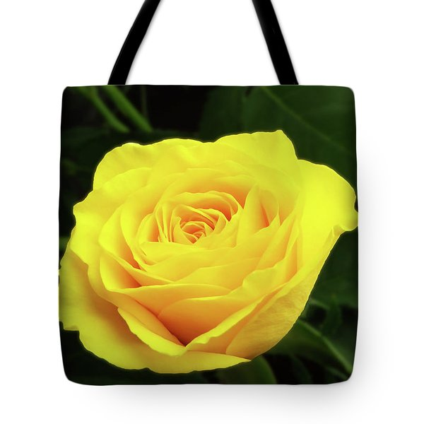 Glorious Yellow Rose Tote Bag